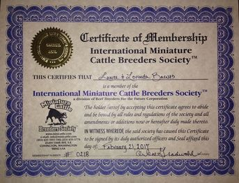 IMCBR Polled Miniature Jerseys cattle breeders registry lifetime membership certificate