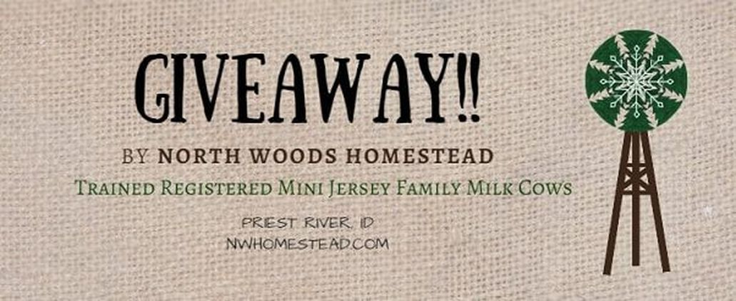 North Woods Homestead Mini Jerseys GIVEAWAY